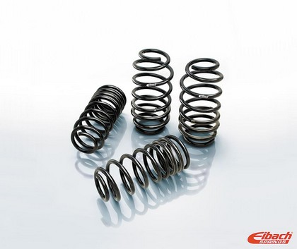 Eibach Pro-Kit Performance Springs 05-10 Magnum, 300 RWD V6