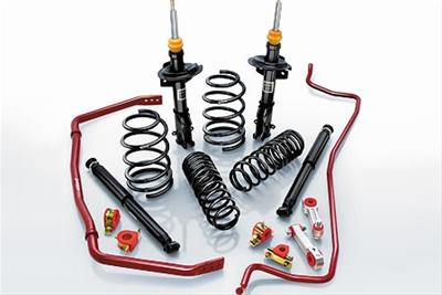 Eibach Pro-System Suspension Lowering Kit 05-10 Magnum,300