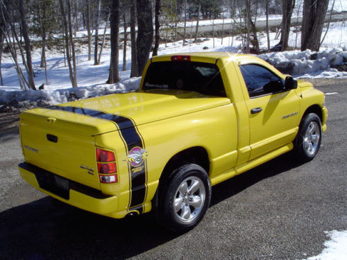 """Rumble Bee"" Tonneau Stripe Decal with OPTIONAL Build Number"