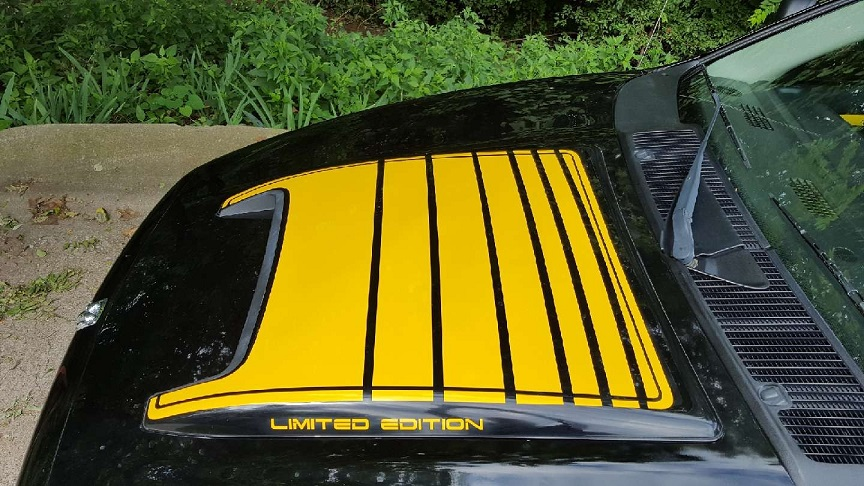 """Rumble Bee"" Custom Limited Edition Hood Scoop Decal Kit"