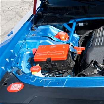 Custom Painted Fuse Box Cover 15-up Challenger,Charger,300
