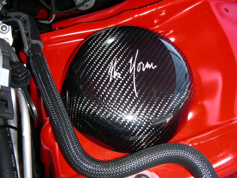 Mr. Norm's Signature Carbon Fiber Strut Covers LX Cars